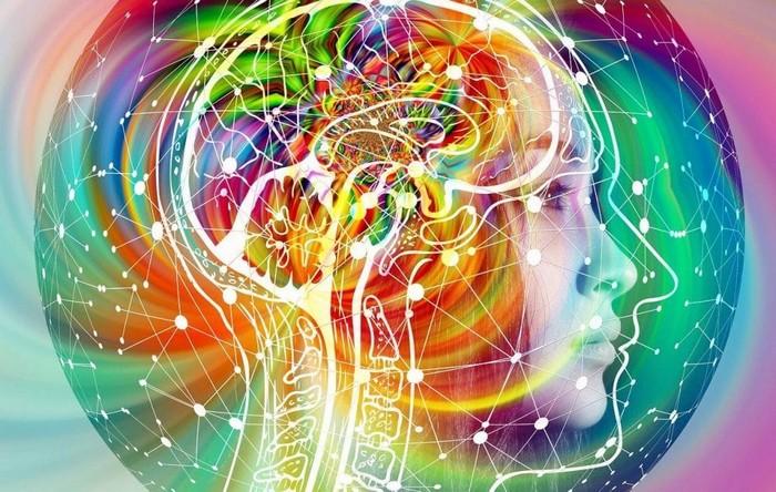 Peut-on faire confiance à notre intuition ?